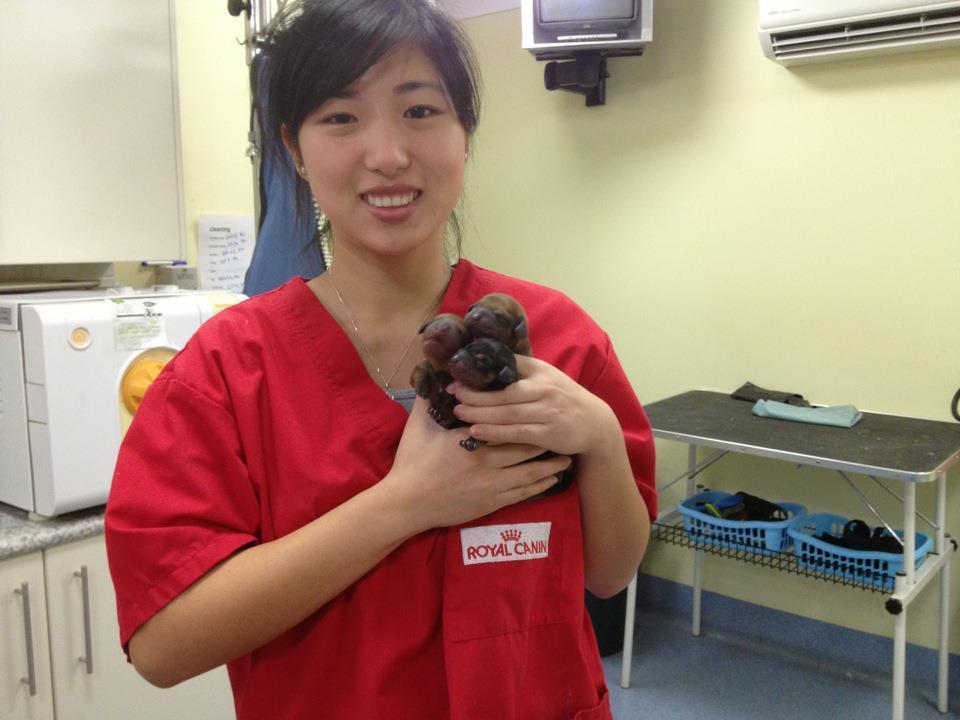 Dr Anita Guo