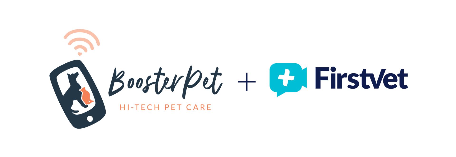 Booster Pet FV WEB HEADER