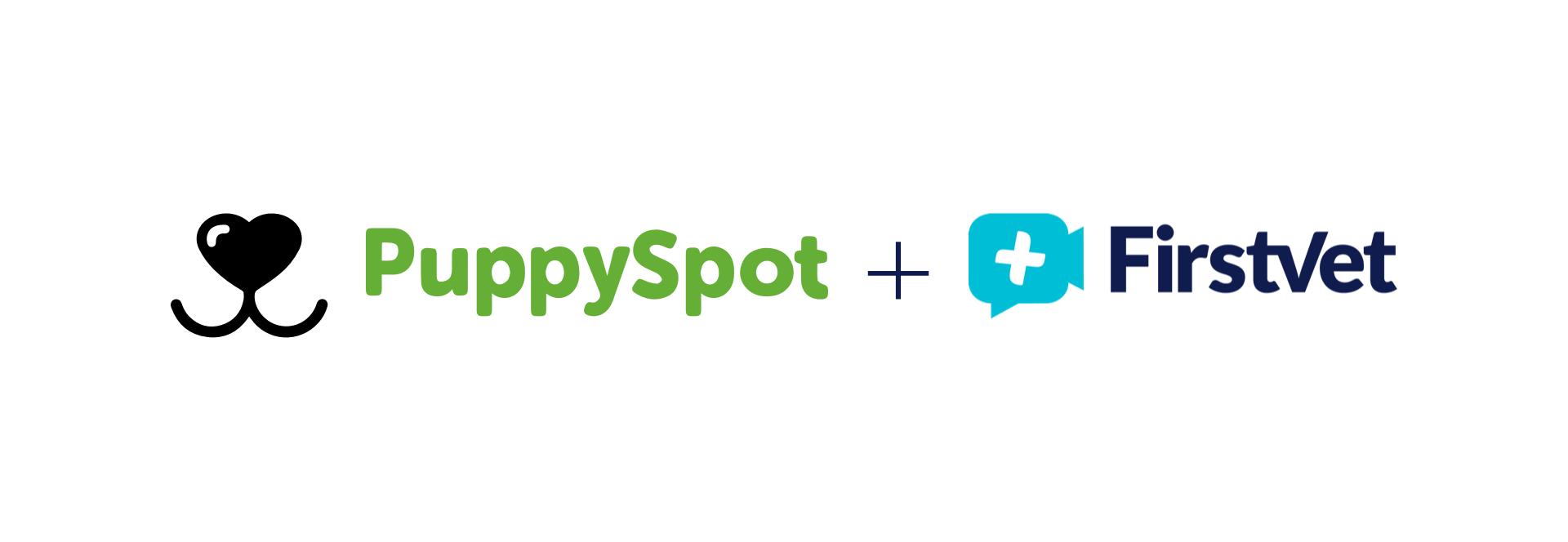 Puppy Spot FV WEB HEADER