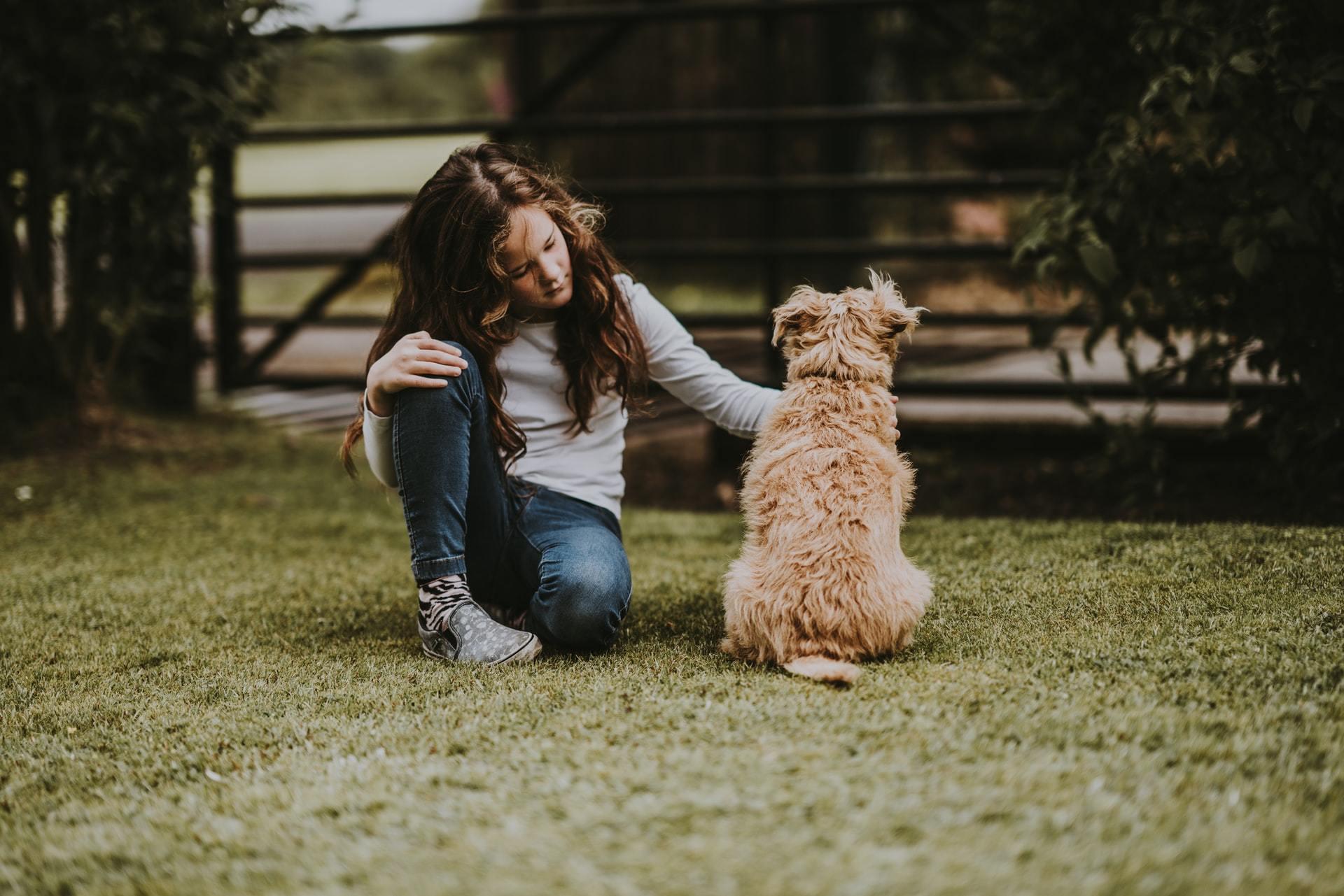 pepto-bismol for dogs