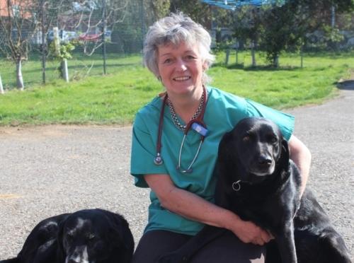 Dr Jill Mellink-Davidson